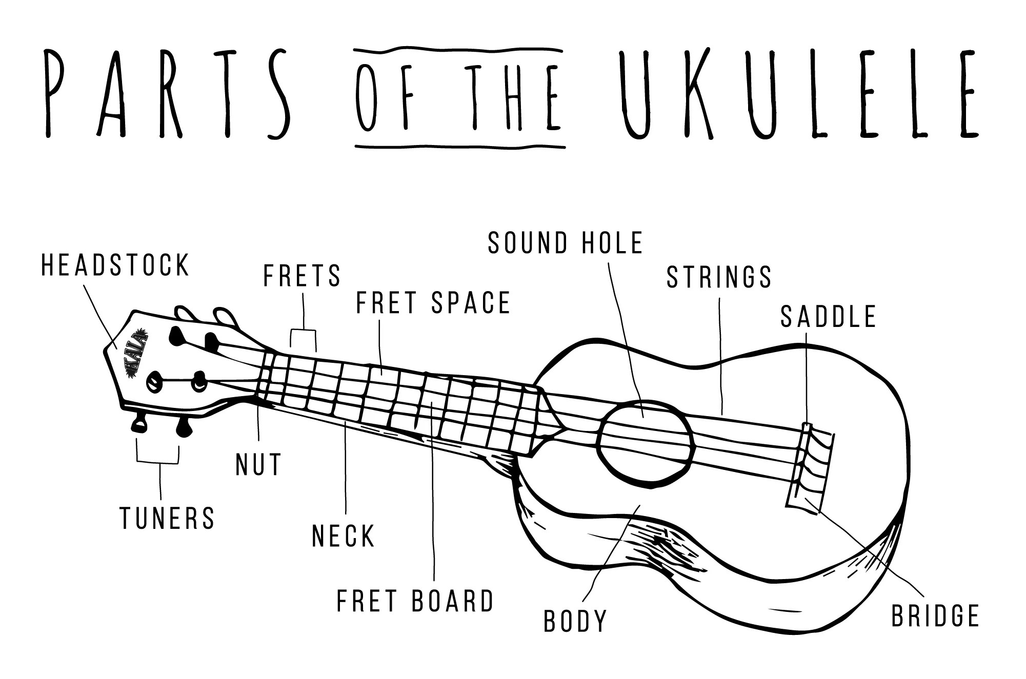 the diagram shows parts of a guitar including the body neck and