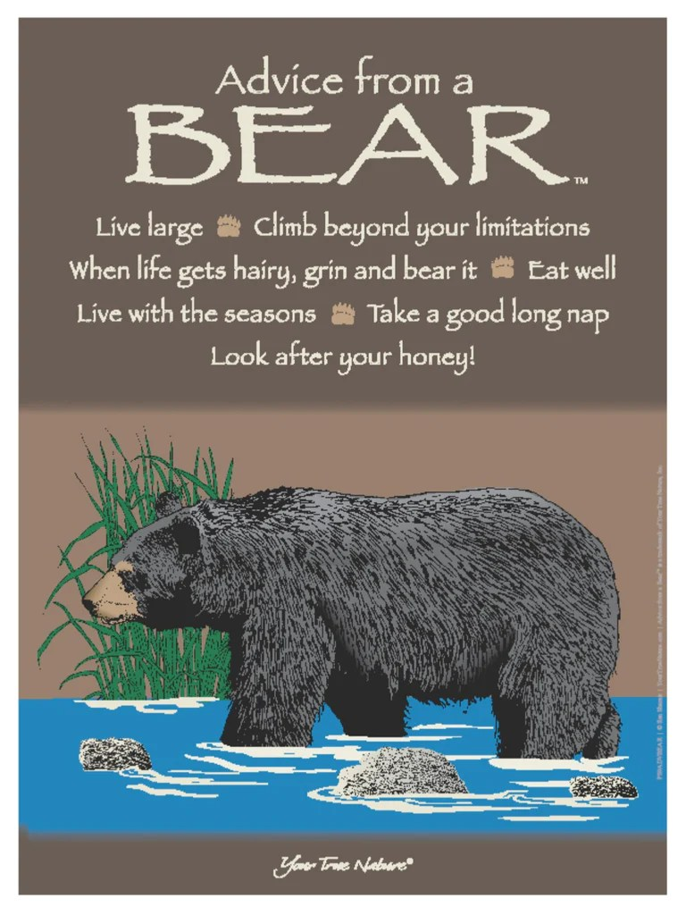 Large Frame For Poster Advice From A Bear Frameable Art Poster 9x12 – Your True