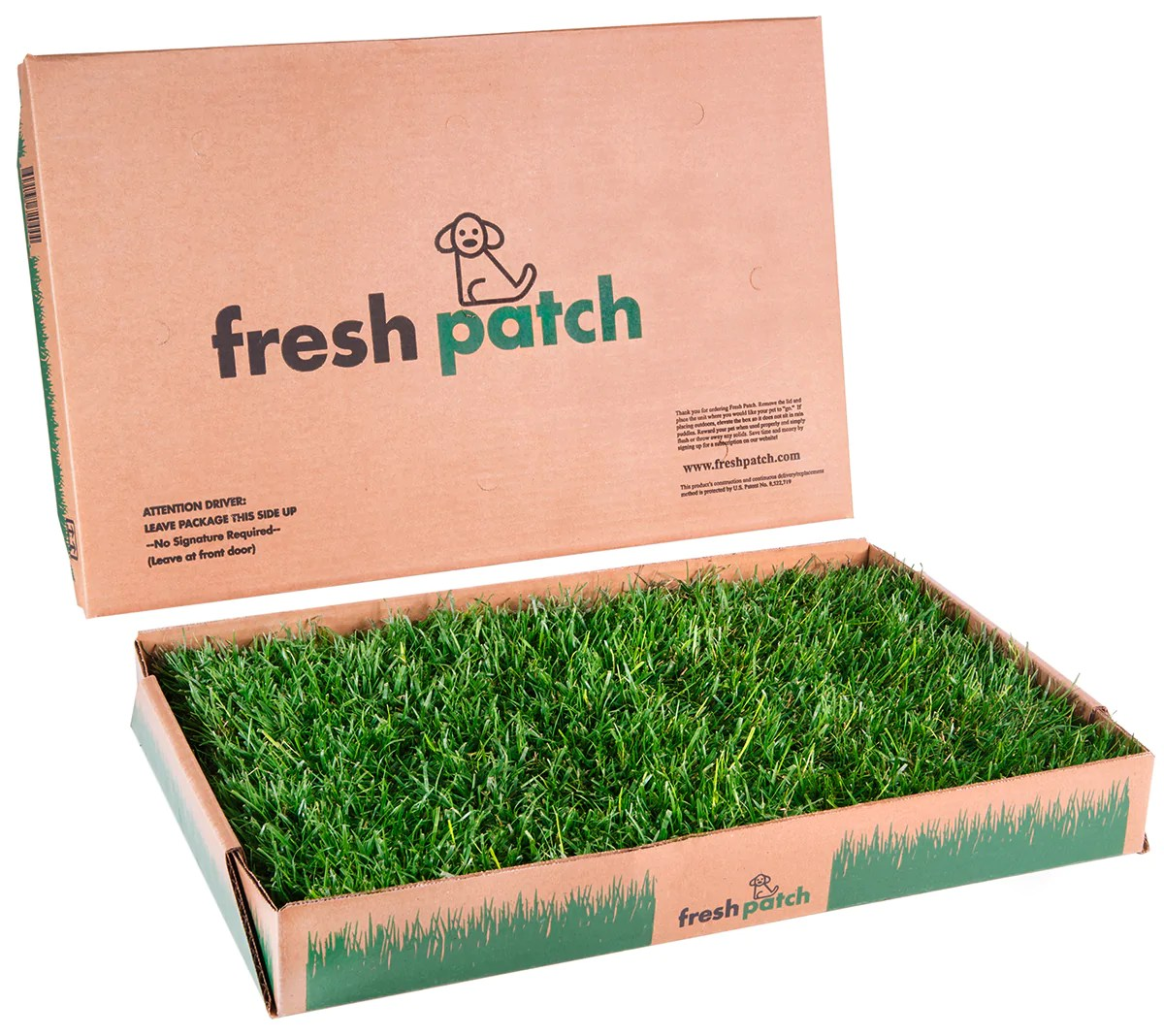 Buy Fake Grass Fresh Patch The Official Real Grass Dog Potty Website