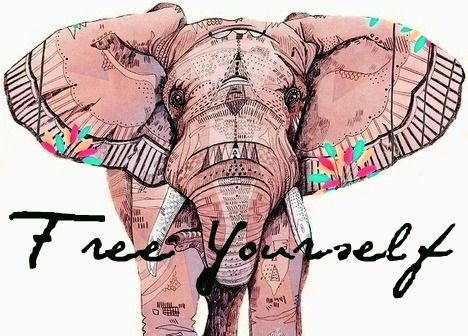 Pinterest Desktop Wallpaper Lotus Quote 10 Inspirational Elephant Quotes You Need Right Now Quan