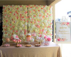 Small Of Baby Shower Backdrop