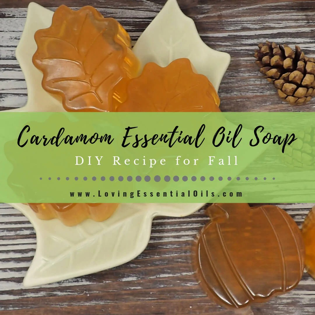 Diy Soap Essential Oils Cardamom Essential Oil Soap Diy Recipe For Fall