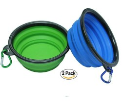 Small Of Collapsible Dog Bowl
