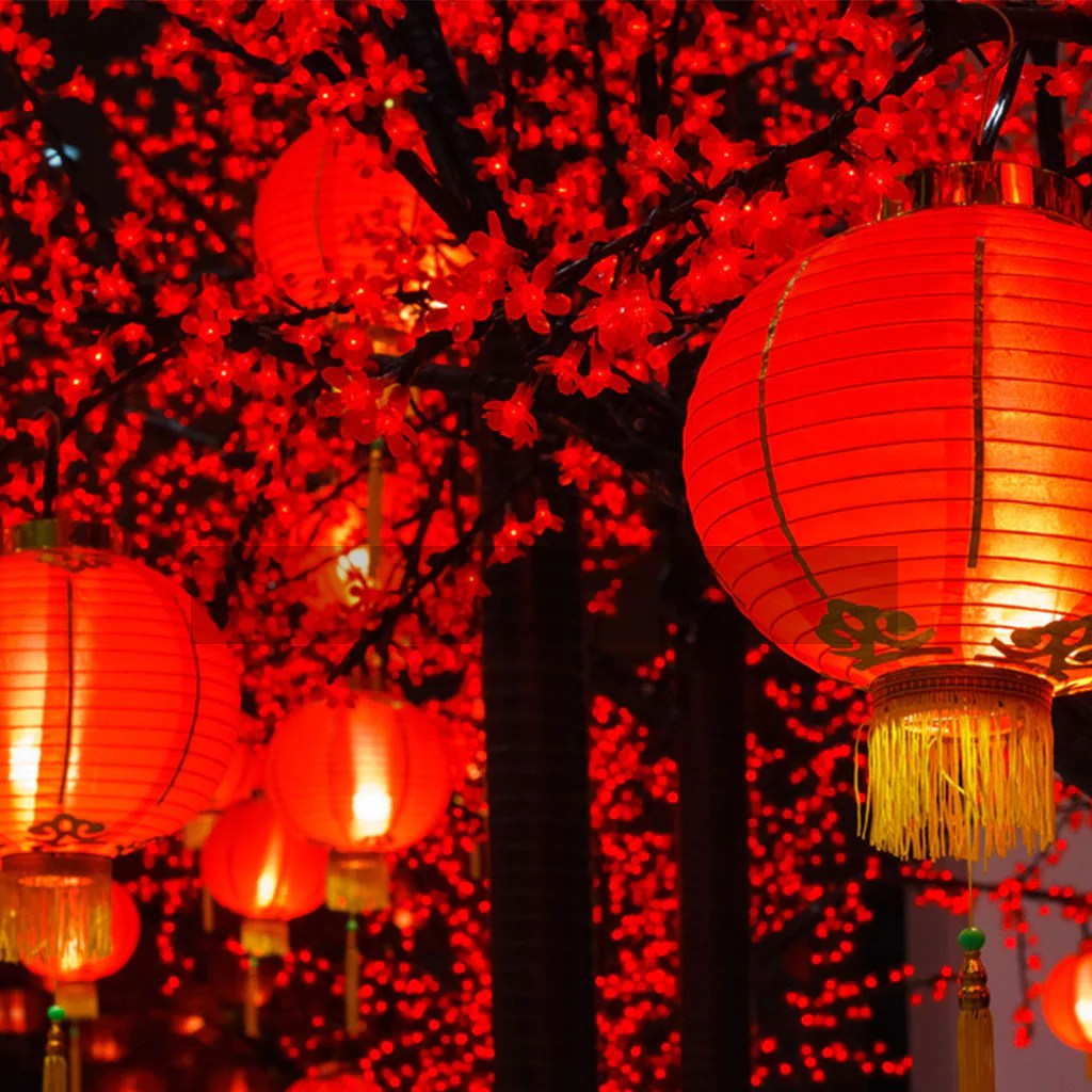 Paper Lanterns Melbourne Lanternshop The Largest Range Of Lanterns In Australia