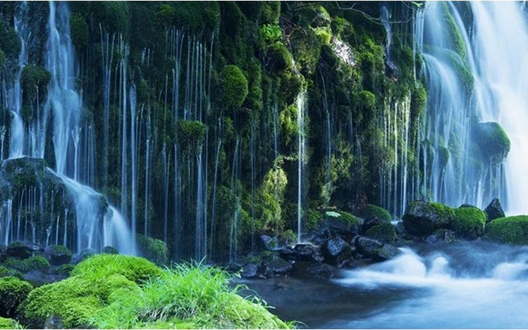 3d Effect Wallpaper For Living Room 3d Green Forest Waterfall Wallpaper High Quality Nature