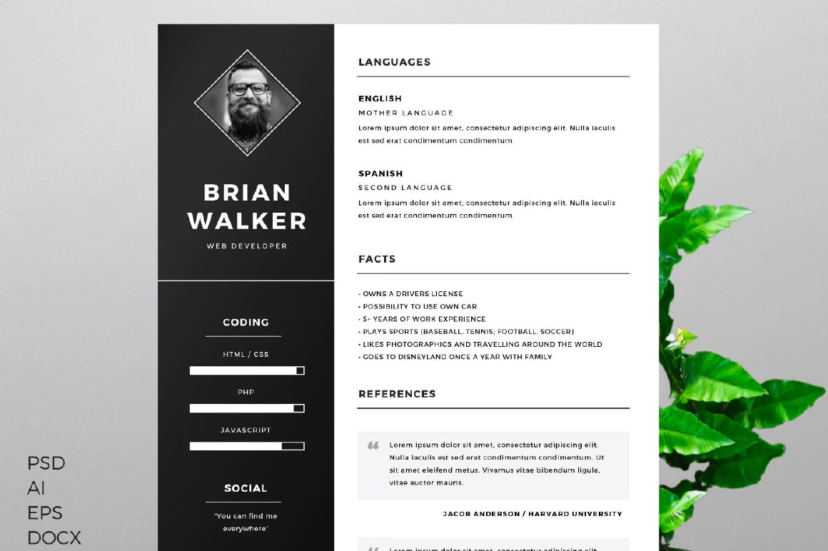 template cv graphique psd