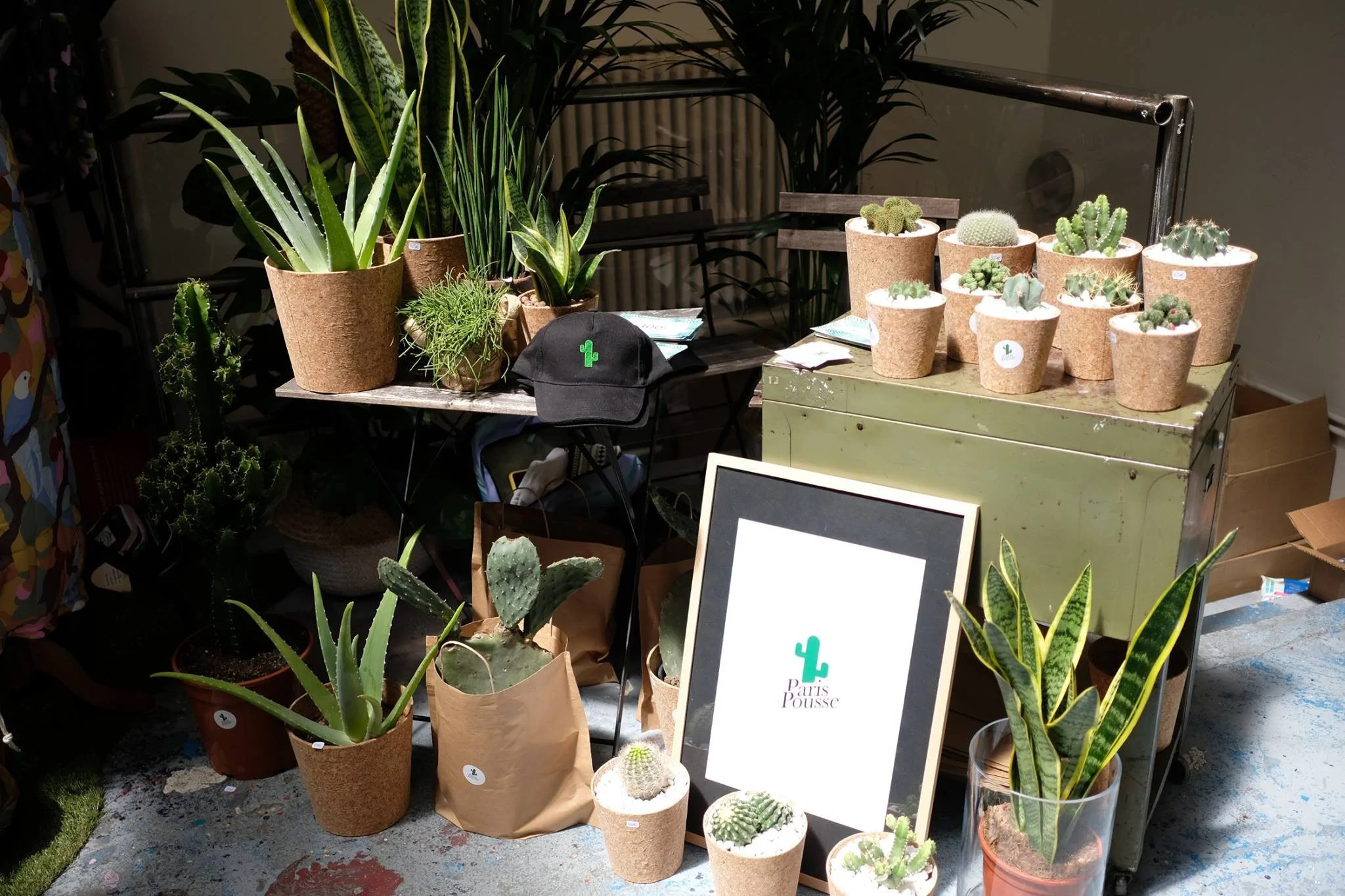 Vente Plantes Paris Des Pop Up Green Dans Paris Paris Pousse
