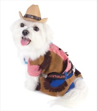 Cowboy Dog Costume  G.W. Little
