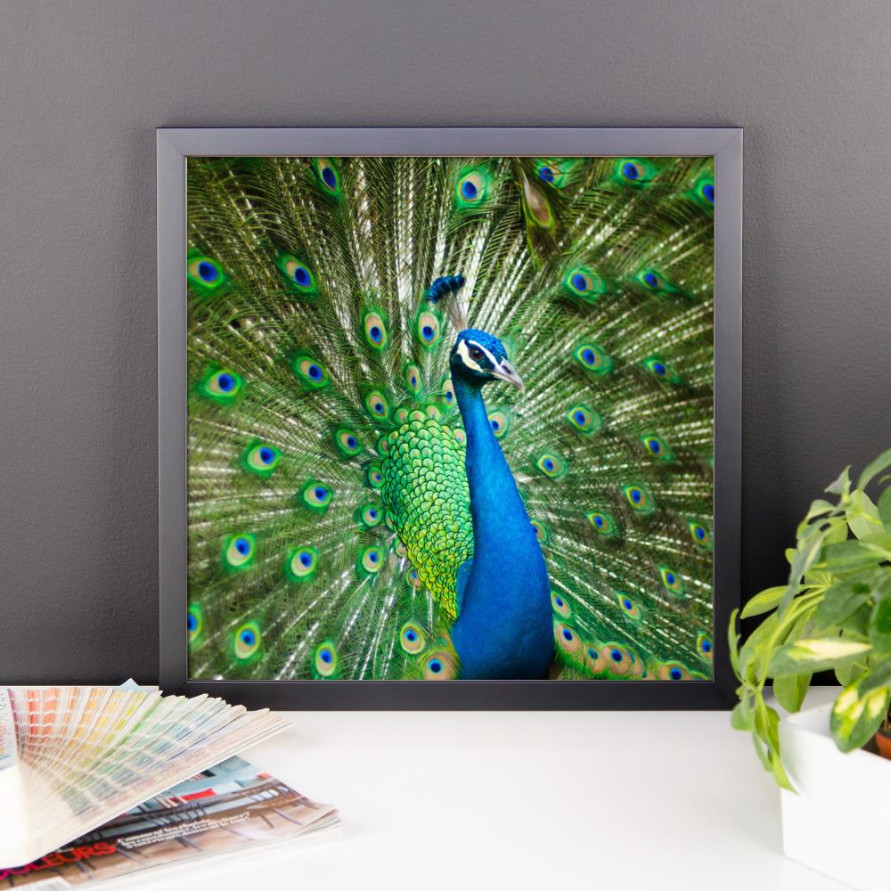 Peacock Living Room Green Peacock Framed Photo Poster Wall Art Decoration Decor For Bedroom Living Room