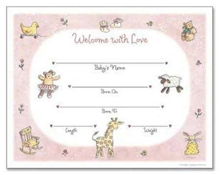 girl birth certificate template - Minimfagency - Birth Certificate Template Printable