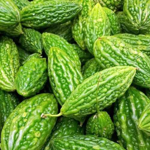 Medium Crop Of Bitter Melon Seeds