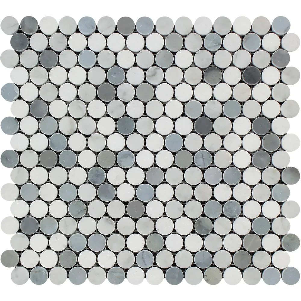Deluxe Thassos Honed Penny Round Mosaic Carrara 2b Thassos 2b Blue 6770ed09 De29 4ad6 92b4 61f9239e3d1a Penny Round Tile Green Penny Round Tiles Australia houzz-02 Penny Round Tile