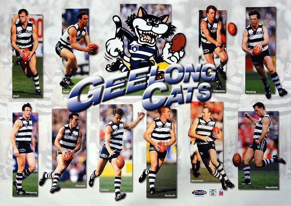 Geelong Cats Best Of Hero Team Poster Memorabiliawarehouse
