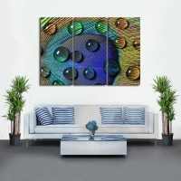Peacock Feather with Drops Multi Panel Canvas Wall Art ...