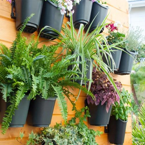 Medium Of Vertical Gardening Kit
