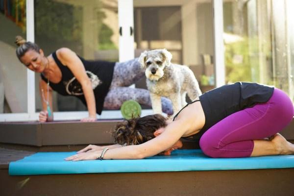 Yoga At Home Gaiam