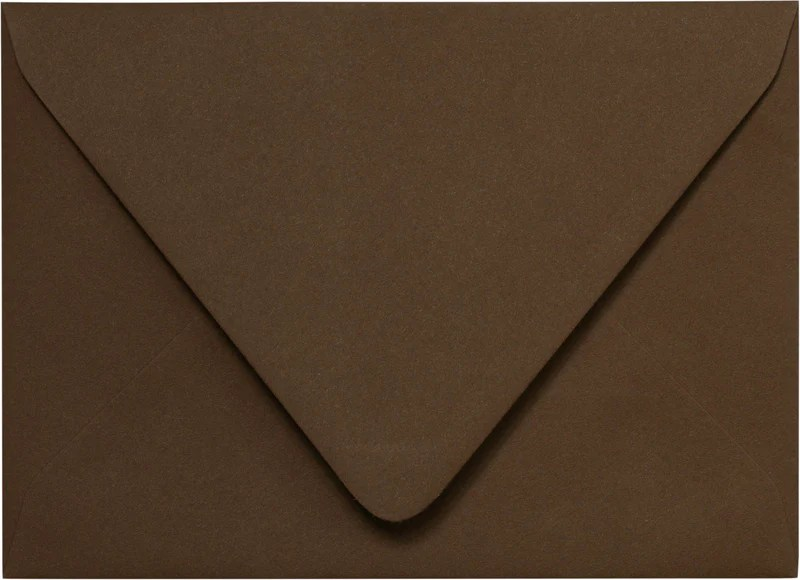 A1 Hot Fudge Euro Flap Solid Rsvp Envelopes French Pop