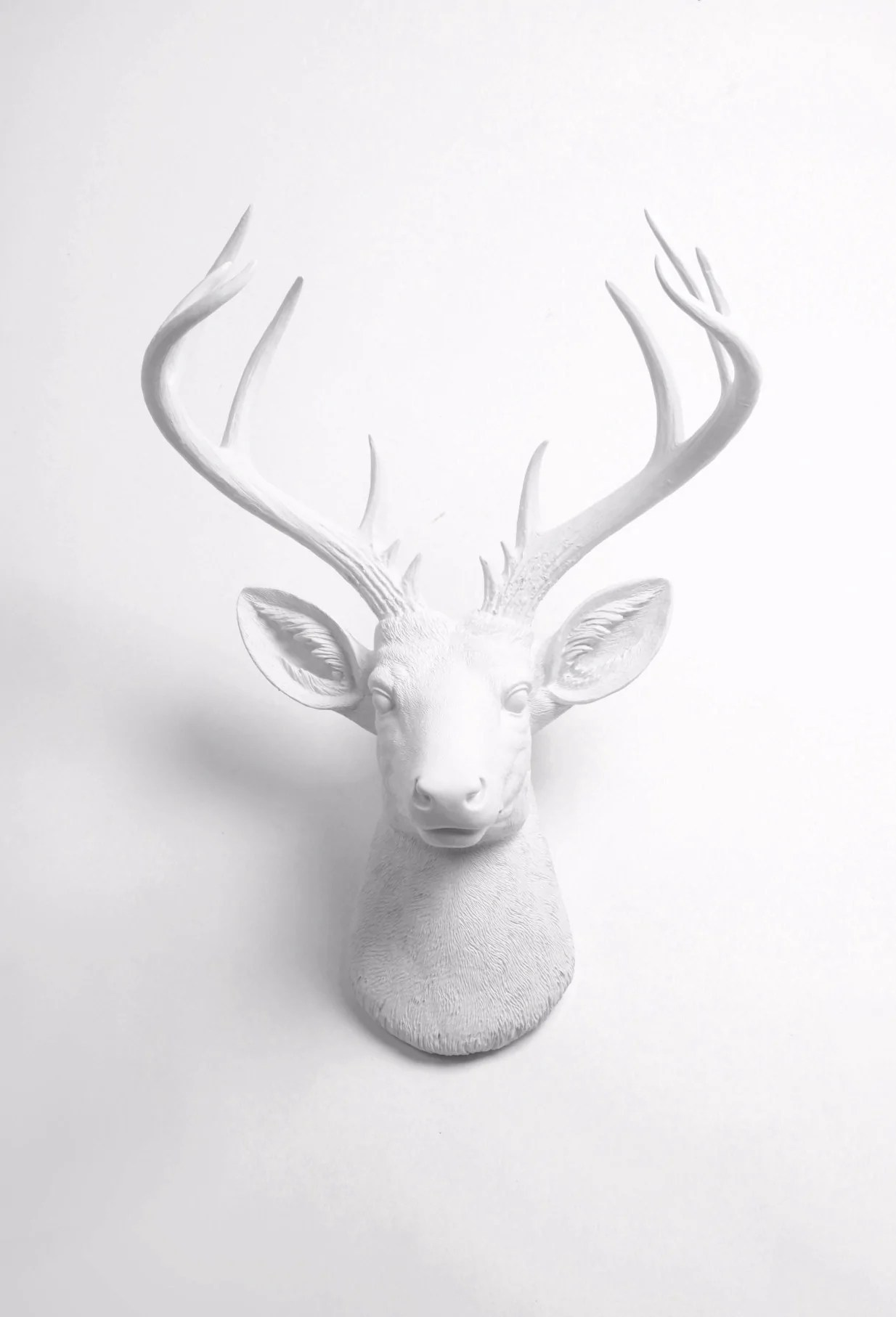 Fake Taxidermy Deer Head White Deer Head Wall Mount The Xl Templeton Fake
