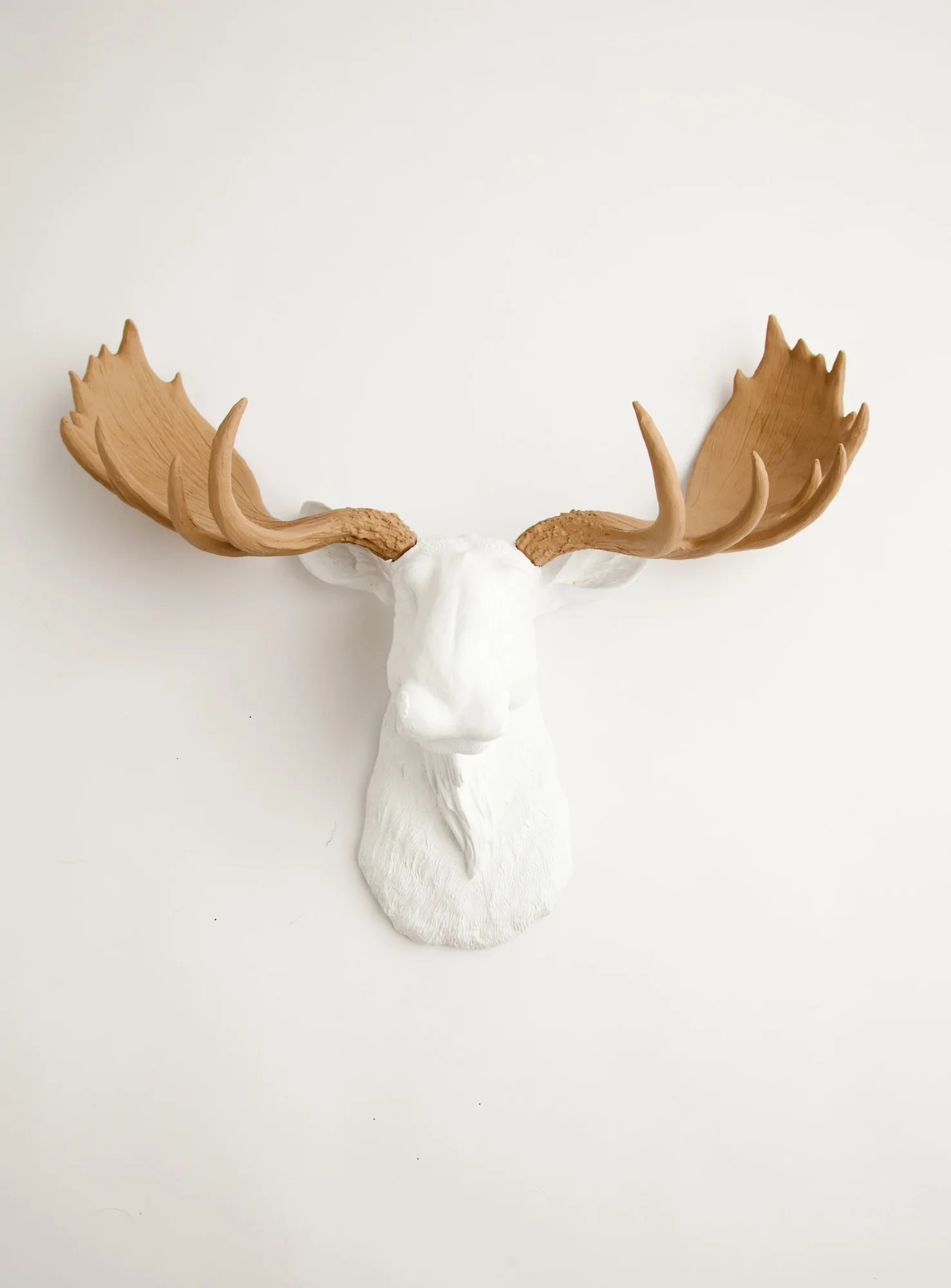 White Porcelain Deer Head Tan Faux Moose Head Wall Mount The Adolpho White Faux