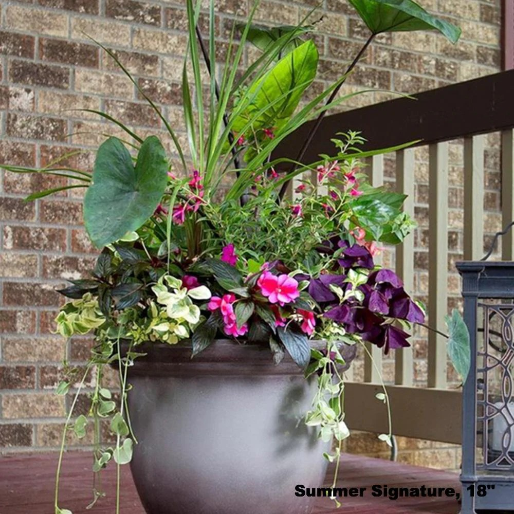 Simple Planters Planter Delivery Subscription