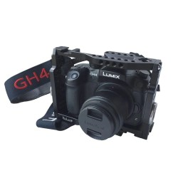 Small Of Gh4 Vs Gh5