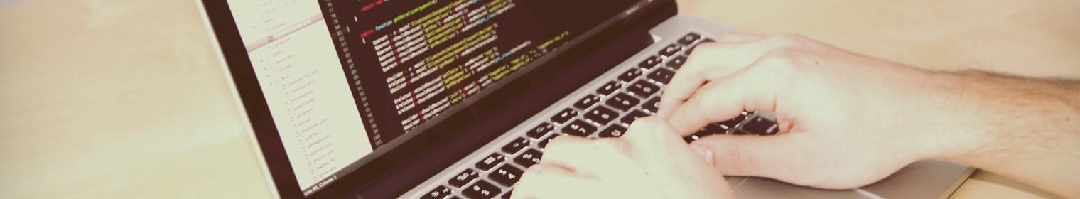 cv informatique base de donnee exemple