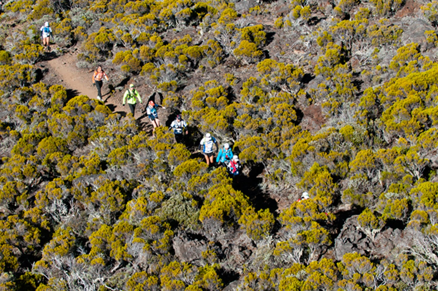 Reunion Island The Vanilla Islands Of The Indian Ocean The Grand Raid On