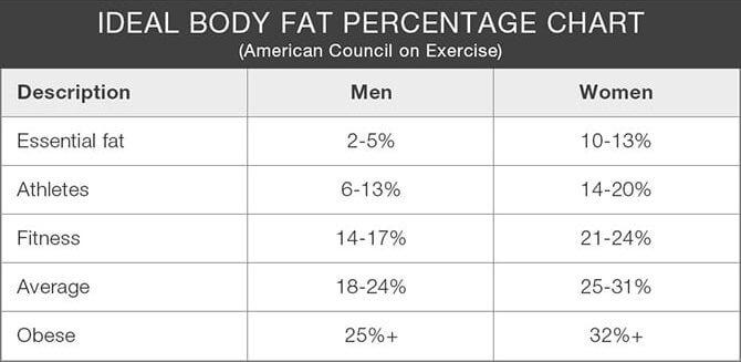 The Best Ways To Measure Your Body Fat Percentage \u2022 Shapezine