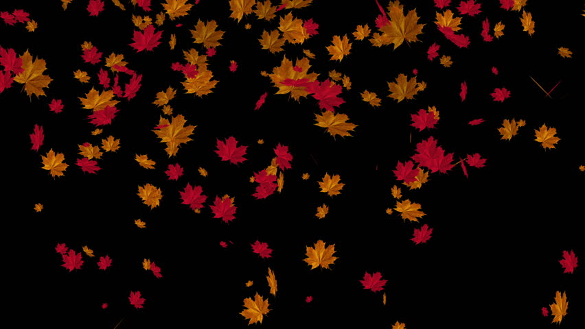 Hd Wallpaper Texture Fall Harvest Falling Autumn Leaves Animation Use Your Footage In The Bg