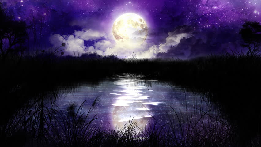 Lunya The Wolf Girl Wallpaper Magic Night Over The Lake Loop Stock Footage Video