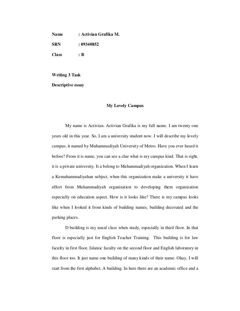 examples of descriptive writing essays
