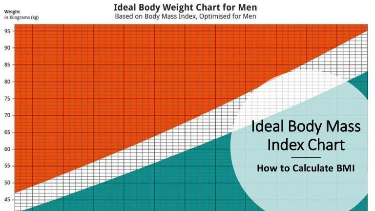 bmi men chart - Onwebioinnovate