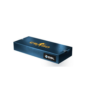 DreamHack Souvenir Package