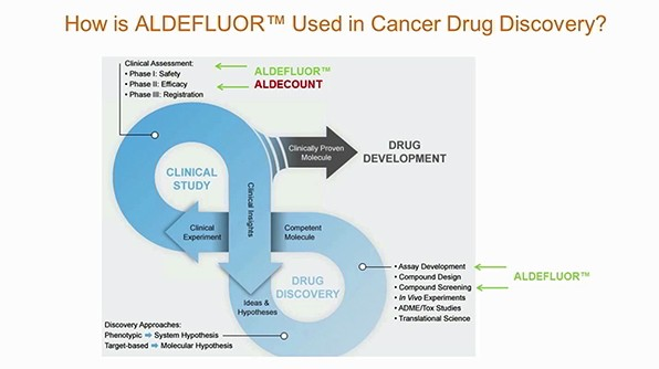 The Basic FACS About ALDEFLUOR™ - A Guide To Successful Flow