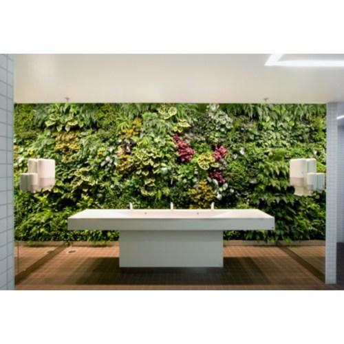 Medium Crop Of Indoor Vertical Gardens