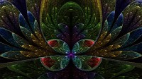 Fractal floral design wallpaper - Abstract wallpapers - #19023