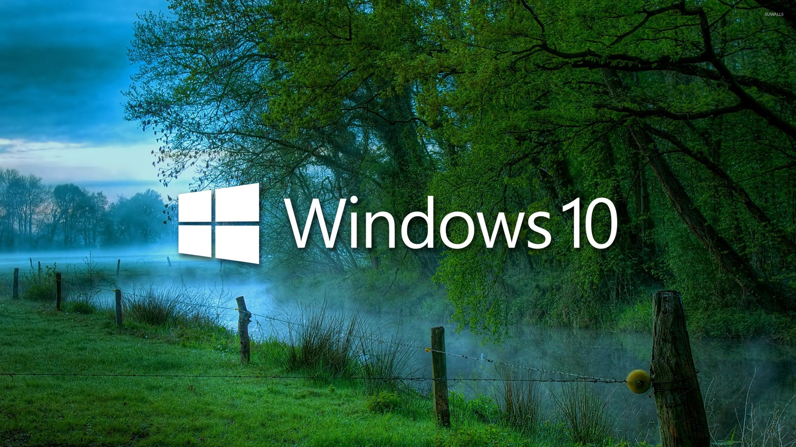 Fall Wallpaper Photos Microsoft Windows 10 In The Misty Morning Logo With Text Wallpaper
