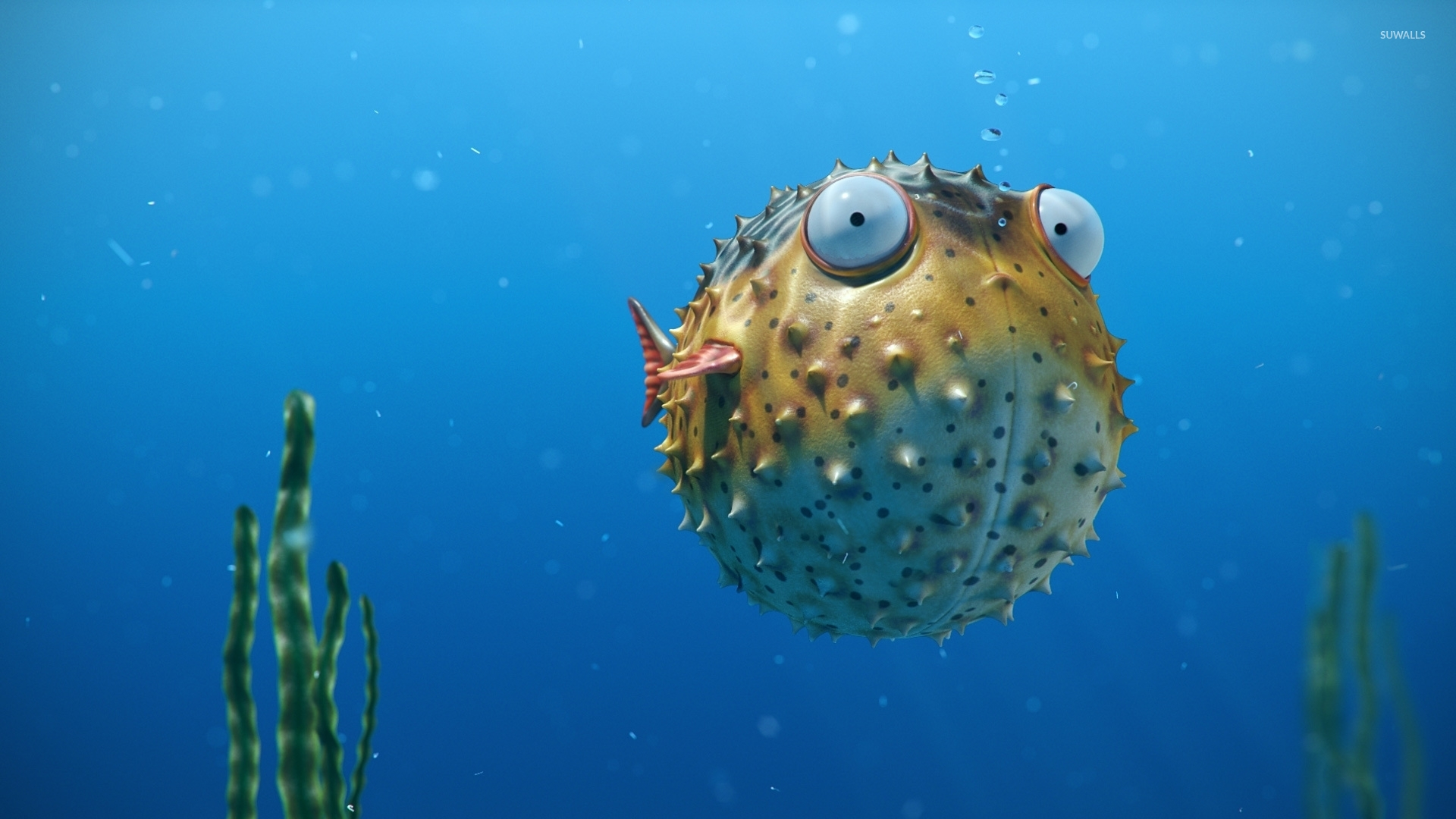 Cute Cloud Wallpaper Blowfish In An Aquarium Wallpaper Digital Art Wallpapers