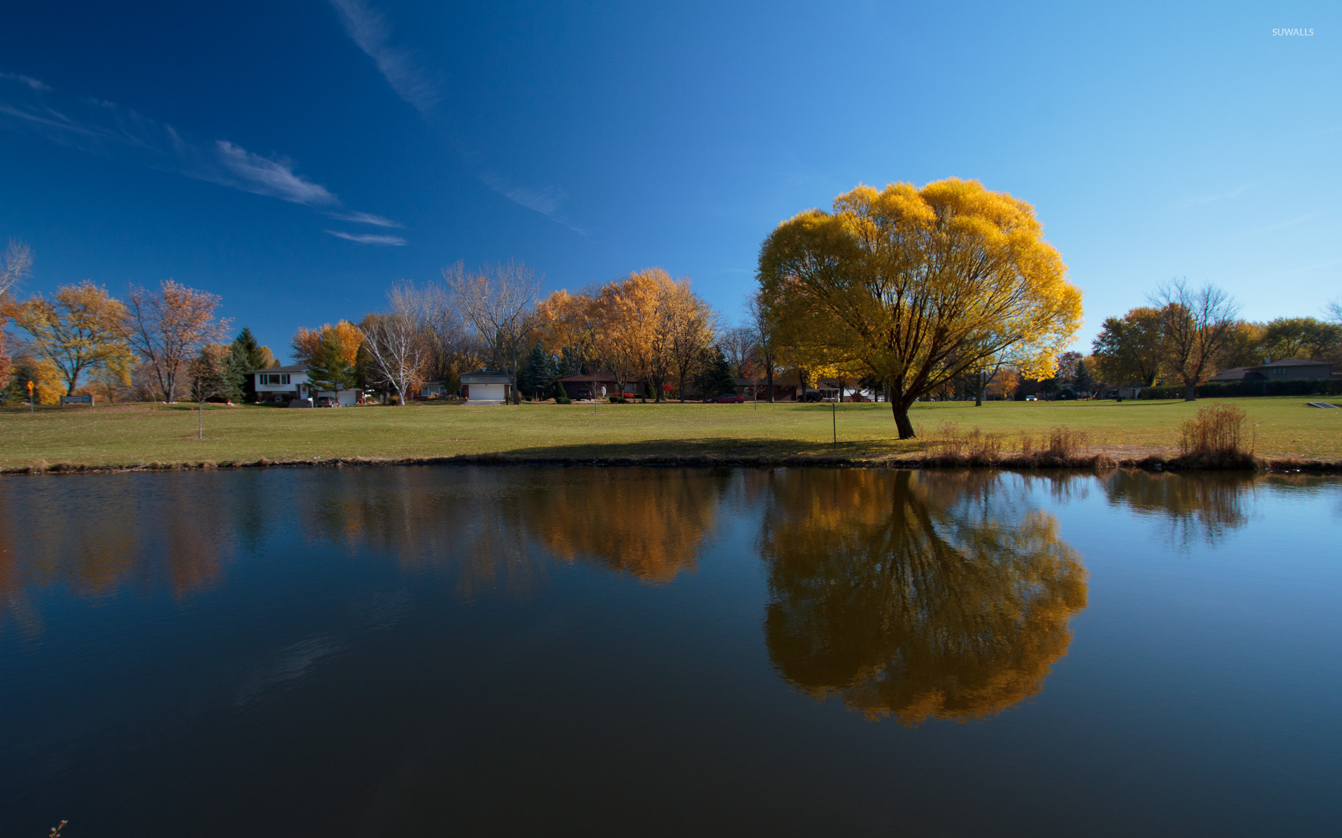Funny Fall Wallpaper Autumn Trees Reflecting In The Water Wallpaper Nature