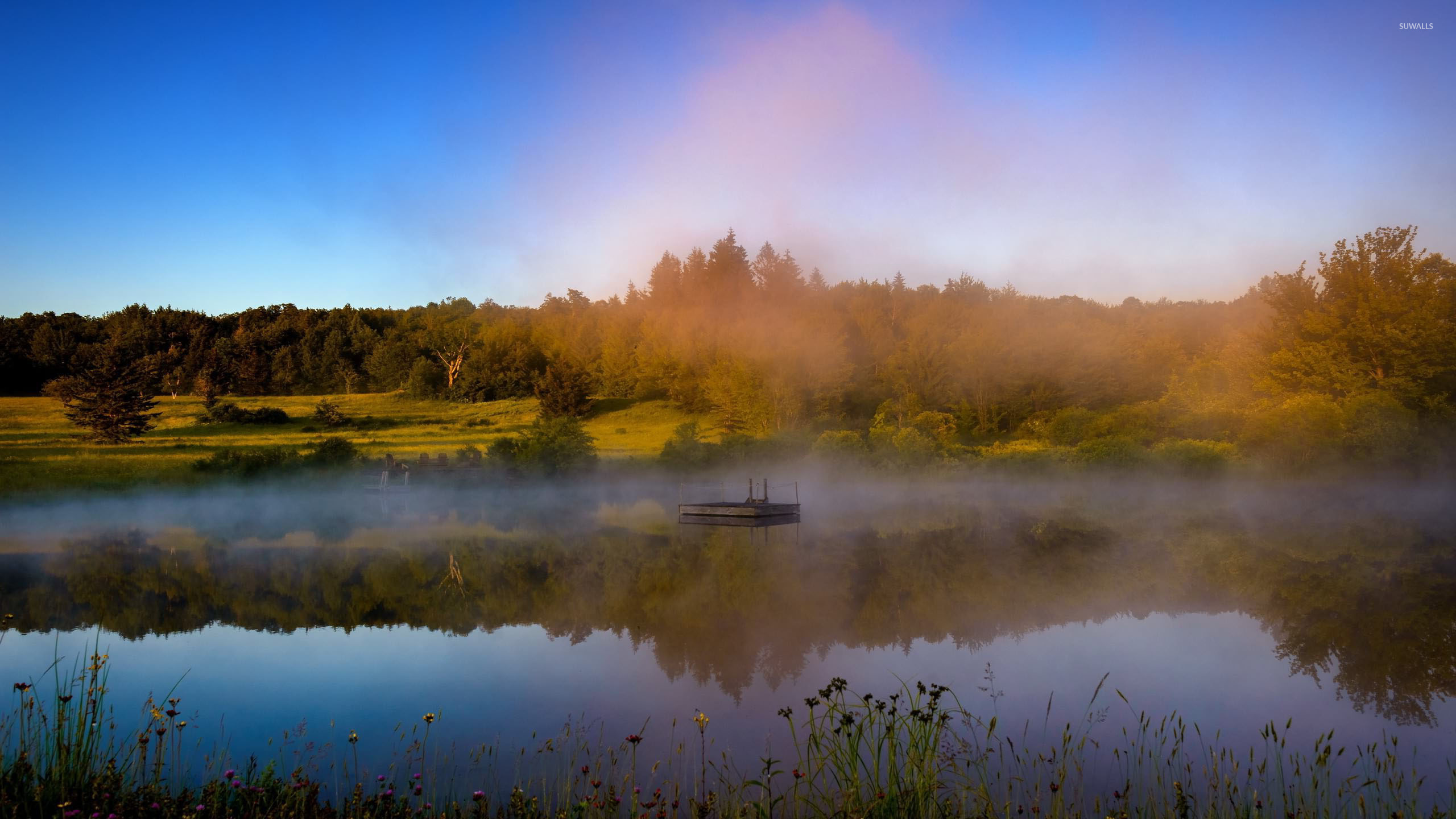 Fall Mountain Wallpaper Free Foggy Lake By The Autumn Forest Wallpaper Nature
