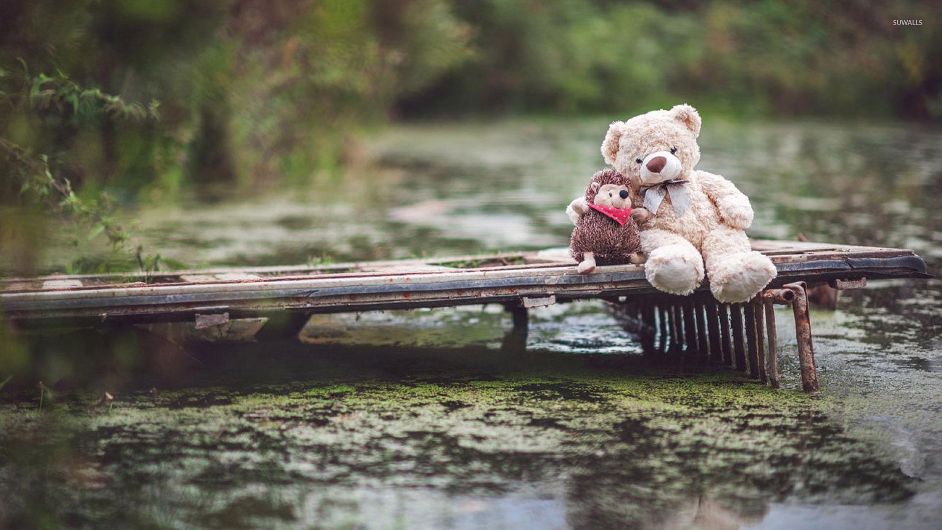 Download Sad Girl Wallpaper With Quotes Teddy Bear And His Hedgehog Friend On The Pier Wallpaper