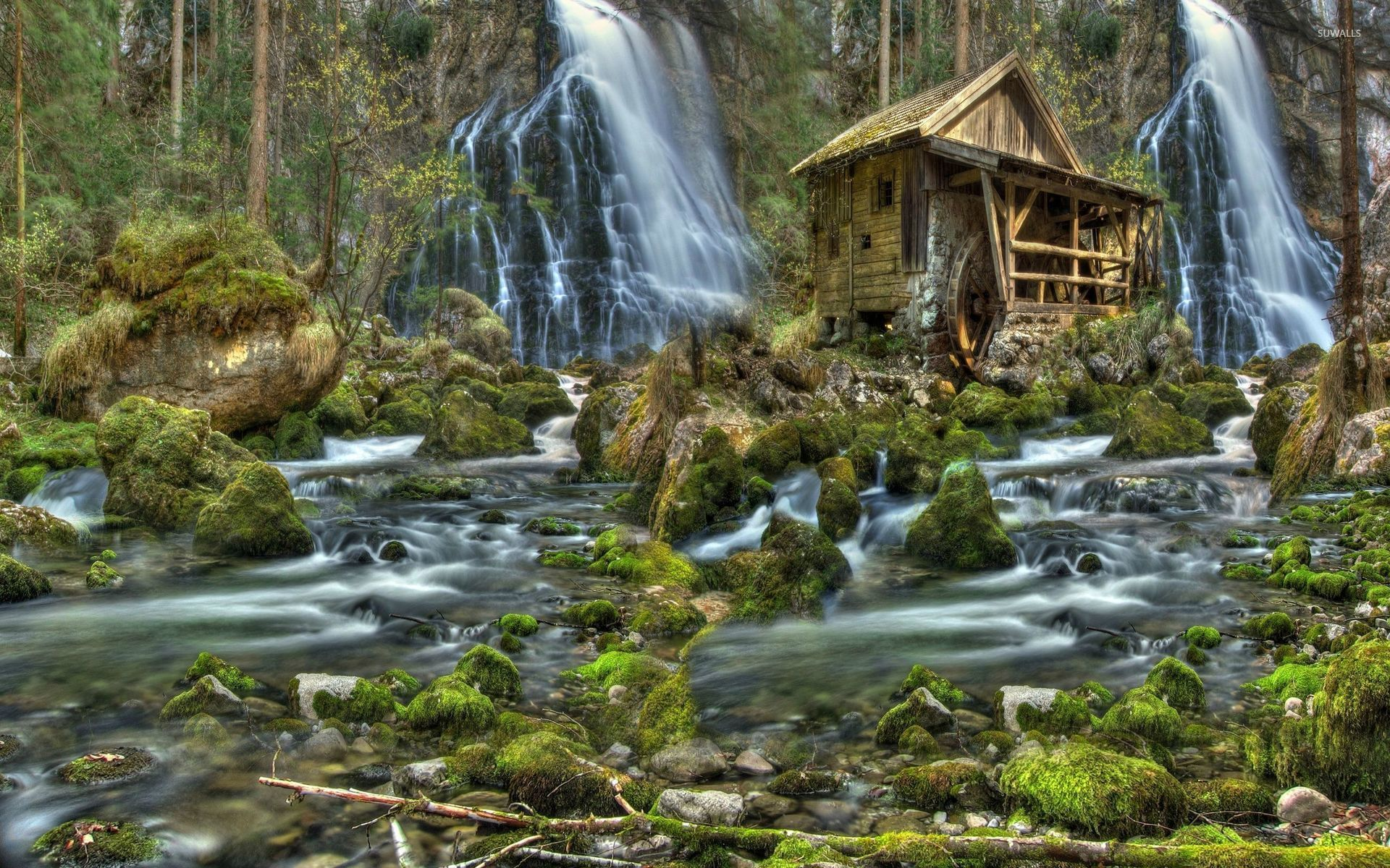 Free Fall Tree Wallpaper Watermill Wallpaper Photography Wallpapers 27517