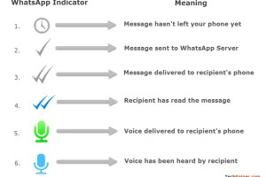 WhatsApp message status tick marks with details