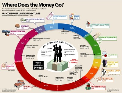 Where Does The Money Go Infographic