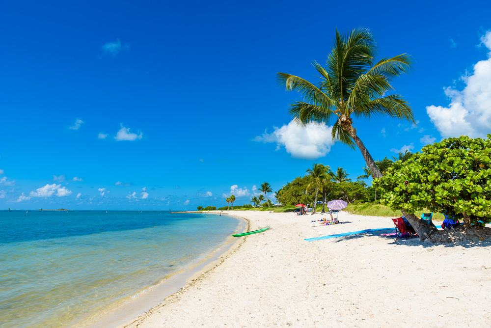 Cute Pineapple Big Wallpapers 15 Best Beaches In Florida Keys The Crazy Tourist