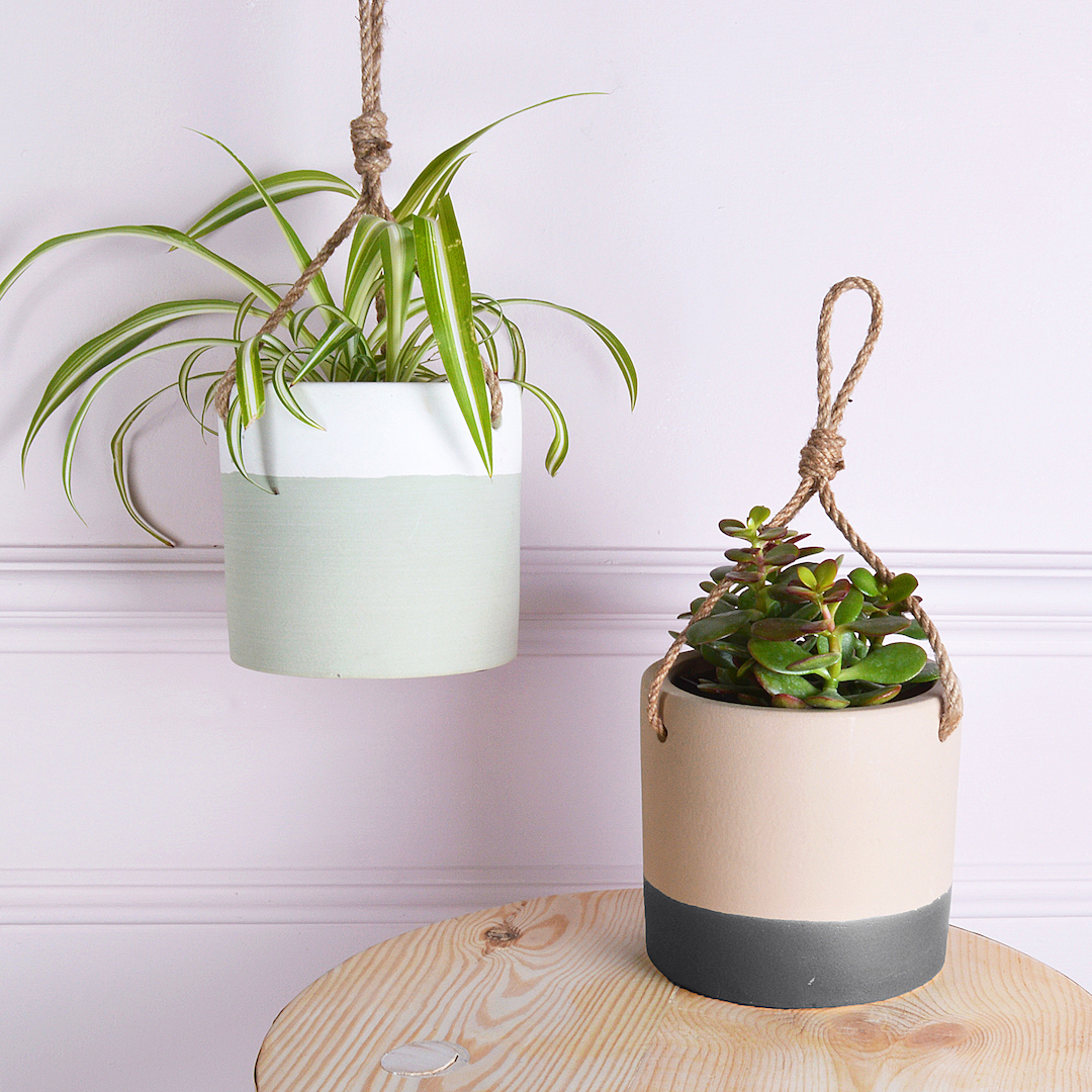Ceramic Pots For Plants Indoor How To Create A Beautiful Indoor Garden This Winter