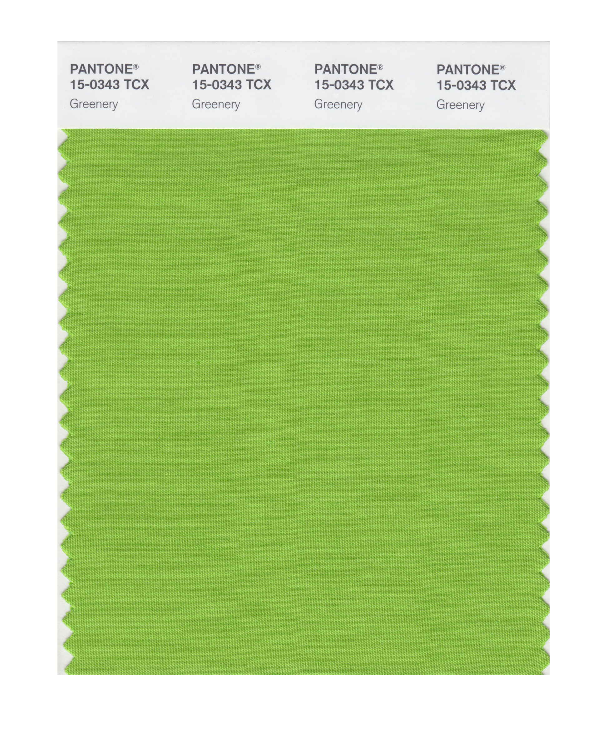 Pantone Greenery Pantones Color Of The Year 2017 Greenery Is Inspired By
