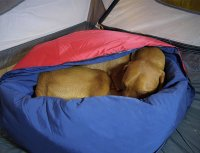 Noblecamper 2-in-1 Ultralight Travel Dog Bed and Sleeping ...