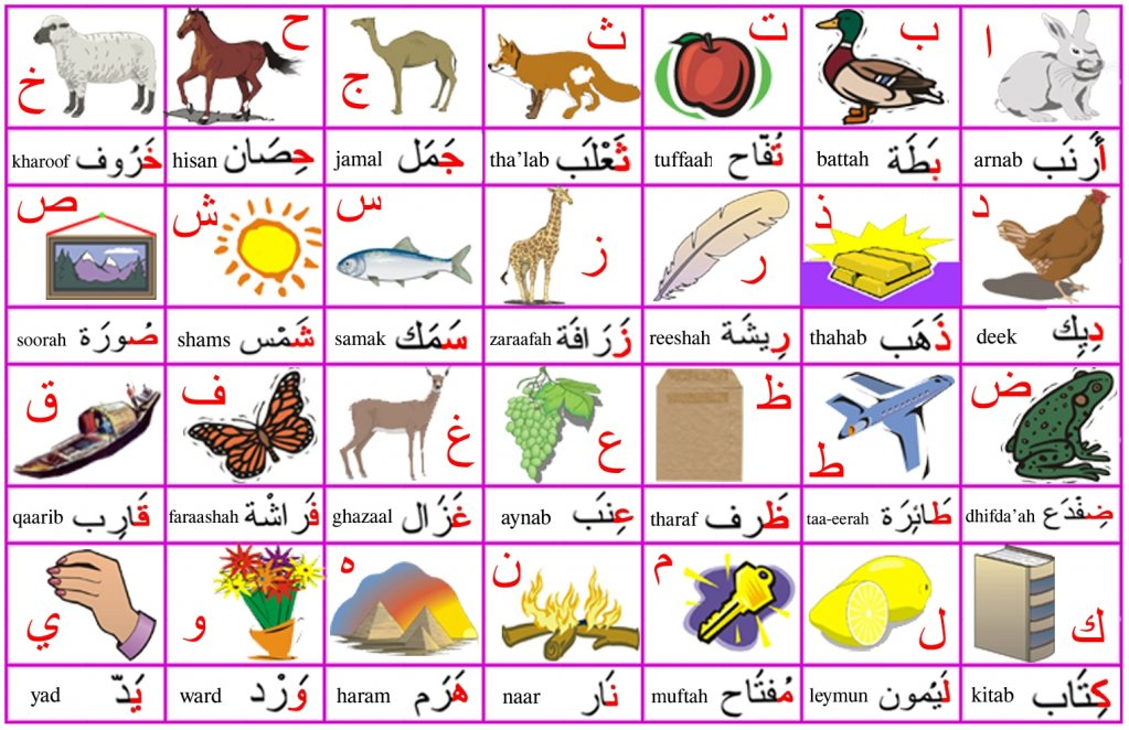alphabets flash cards