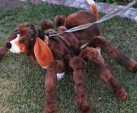 Dog Tarantula Costume